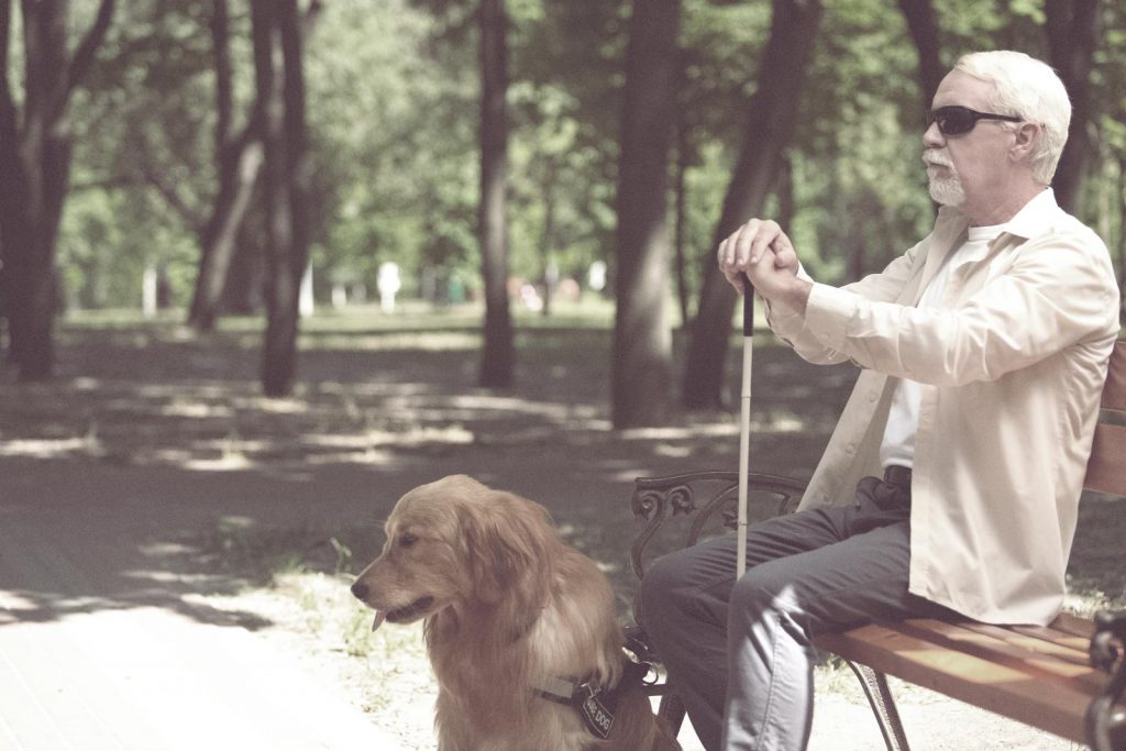 Visually Impaired Man on Park Bench